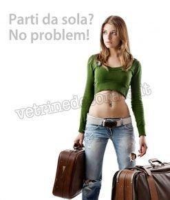 vetrofania con ragazza con valigie