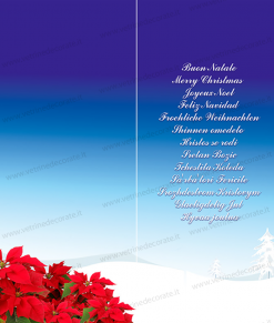 pendente-natalizio-con-stelle-di-natale-e-scritte augurali in varie lingue