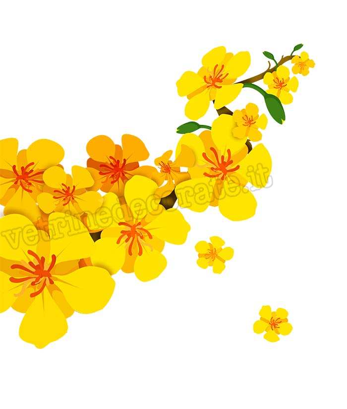 Fiori Gialli Yellow Flowers.Branch With Yellow Flowers And Buds