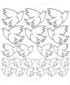 colombe-bianche-di-varie-dimensioni