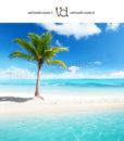 isolotto con palma nel mare tropicale