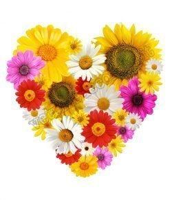 adesivo cuore composto da fiori