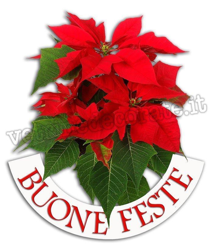 Stelle Di Natale Immagini.Decorazione Con Gruppo Di Stelle Di Natale E Scritta Buone Feste