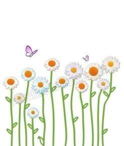 vetrofania grandi margherite e farfalle