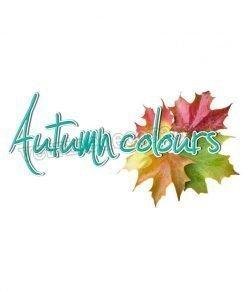 vetrofania scritta autumn colours