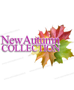 new autumn collection con corona d foglie