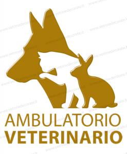 scritta ambulatorio veterinario con cane, gatto e coniglio in colore oro
