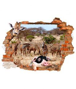 maialino con le zebre dietro al buco nella parete su adesivo murale