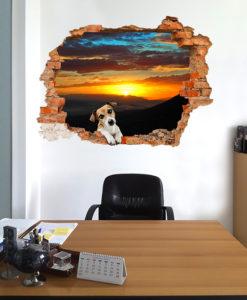Tramonto con cucciolo di cane del buco in ufficio