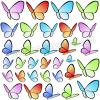 Gruppo di farfalle colorate