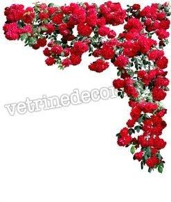adesivo con rose rosse