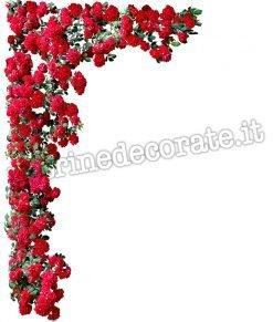 vetrofania con roseto con rose rosse