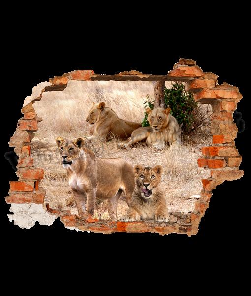 cucciolo e leoni