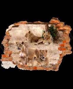 leoni dietro il buco nella parete