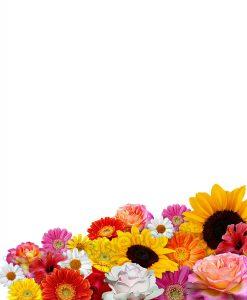 Decorazione floreale con fiori di varia grandezza