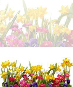 adesivo modulo vari fiori
