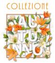 scritta collezione d'autunno