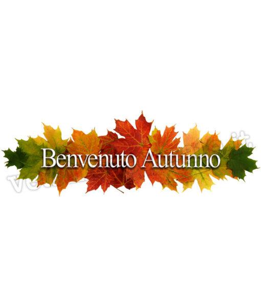 decorazione-foglie-autunno