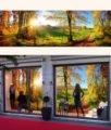 strada-campagna-autunno