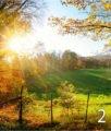 strada-campagna-autunno-2