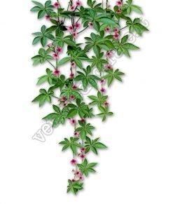 vetrofania pianta pendente fiorita