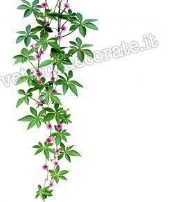 vetrofania pianta-pendente-con-fiori