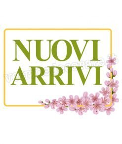 vetrofania cornice-fiori-rosa