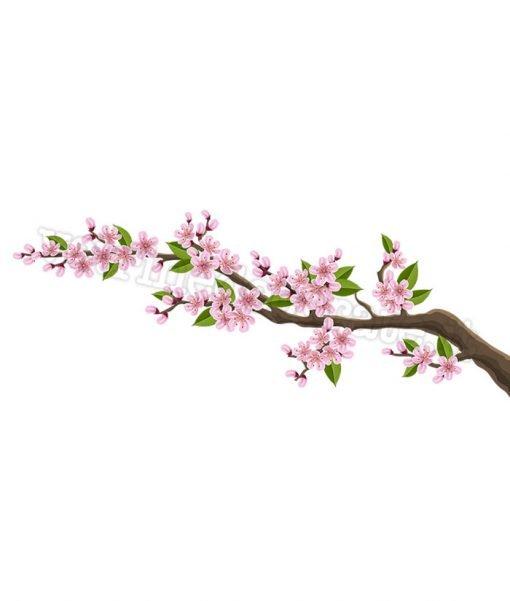 ramo -fiori-rosa