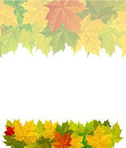 vetrofania modulo foglie verdi