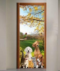 Porta-Veterinario-animali
