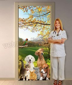 Porta-studio-veterinario