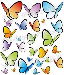 adesivo gruppo-Farfalle-colorate