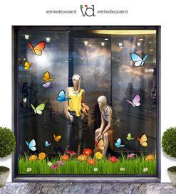 Vetrina-farfalle