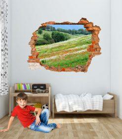 Stanza con decorazione murale con finto buco sulla parete